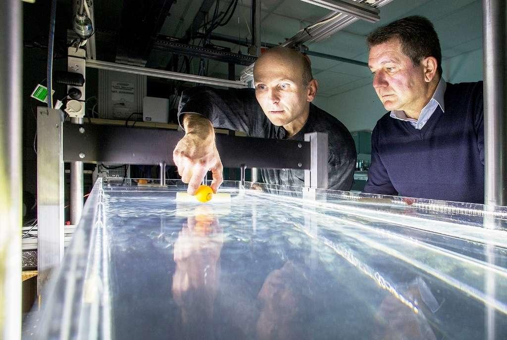 Horst Punzmann (à gauche) et Michael Shats (à droite) sont deux des physiciens de l'Australian National University (ANU) qui ont découvert un surprenant phénomène avec les ondes de gravité à la surface de l'eau. Les vagues et la houle à la surface de la mer sont les exemples les plus communs d'ondes de gravité. © Stuart Hay