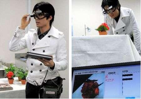 A gauche, le dispositif complet. A droite, les cyber goggles identifiant un pétunia (apparaissant sur l'écran témoin avec sa dénomination). Crédit Université de Tokyo