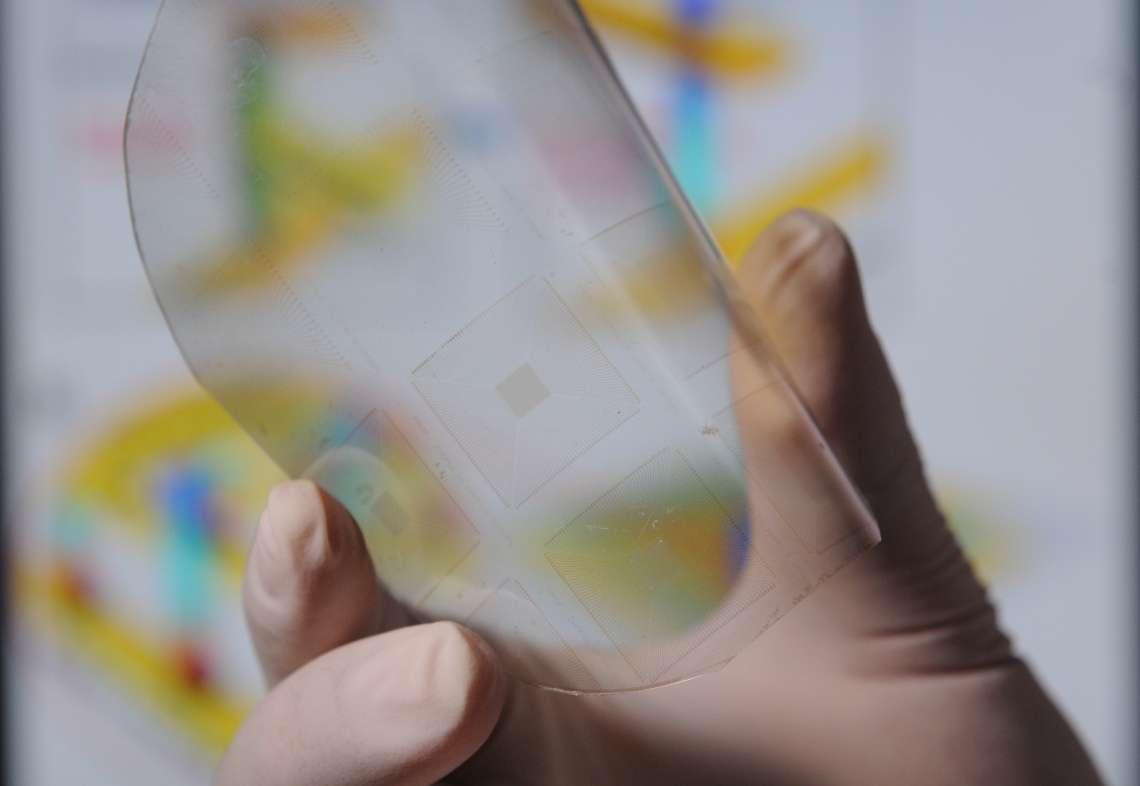 Des scientifiques viennent de créer une peau artificielle capable d'un sens du toucher aussi développé que la peau humaine. © Gary Meek, Georgia Tech Photo