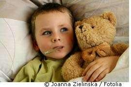 Camphre, eucalyptol et menthol sont des produits très actifs. © Joanna Zielinska/Fotolia