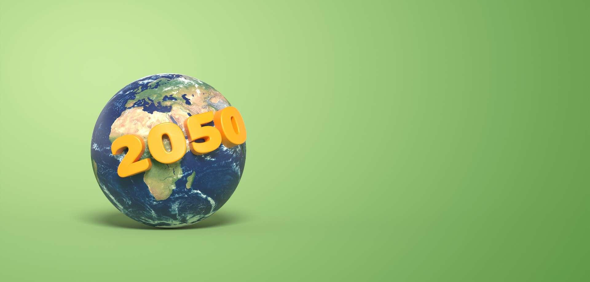 De nombreux États souhaitent atteindre la neutralité carbone en 2050. © Fox_Dsign, Adobe Stock