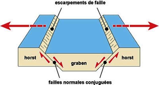 Un rift peut être continental. C'est un fossé d'effondrement, encore appelé graben, bordé par des failles dites normales conjuguées et des blocs appelés horst. Les flèches rouges sur ce schéma indiquent les mouvements responsables de la formation d'un rift. © C. Brunet, CNRS