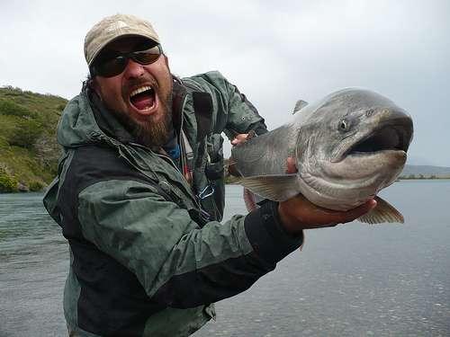 Le saumon, gras comme beaucoup de poissons des mers froides, est riche en oméga-3. © Pescador/Flickr - Licence Creative Common (by-nc-sa 2.0)