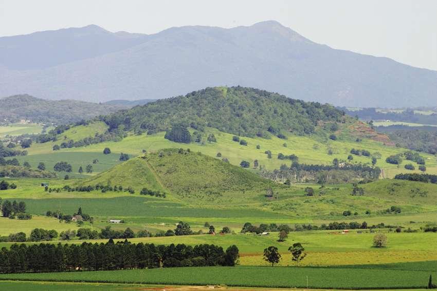 Pour trouver Hylandia dockrillii et ses graines antitumeur, il faut aller en Australie, dans l'État du Queensland, et monter vers le nord, bien au-delà du tropique, jusqu'à la région de Cairns, où commence la péninsule du cap York. Près d'Atherton se trouvent les Tablelands, un site connu pour des escapades dans la nature. © Atherton Tablelands