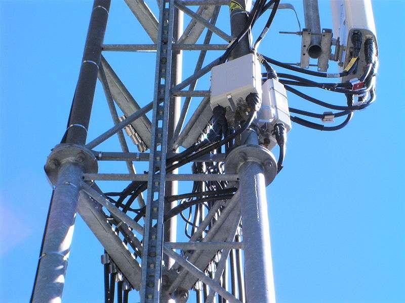 Des rats élevés dans des conditions de faible exposition aux ondes électromagnétiques, comme celles émises par les antennes-relais, pourraient voir leur organisme affecté. Quel impact sur la santé ? Il est encore trop tôt pour le mesurer. © France64160, Wikipédia, cc by sa 3.0