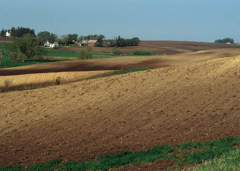 La terre végétale constitue la première couche du sol. © Lynn Betts, Domaine public, Wikimedia Commons