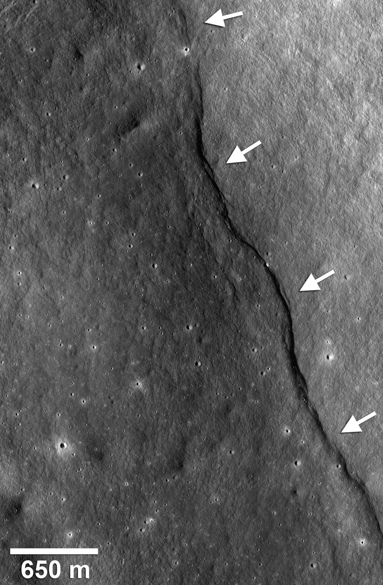 Près du cratère Gregory (2,1°N, 128,1°E), un escarpement de faille est bien visible, comme le montrent les flèches blanches. Crédit : Nasa/Goddard/Arizona State University/Smithsonian