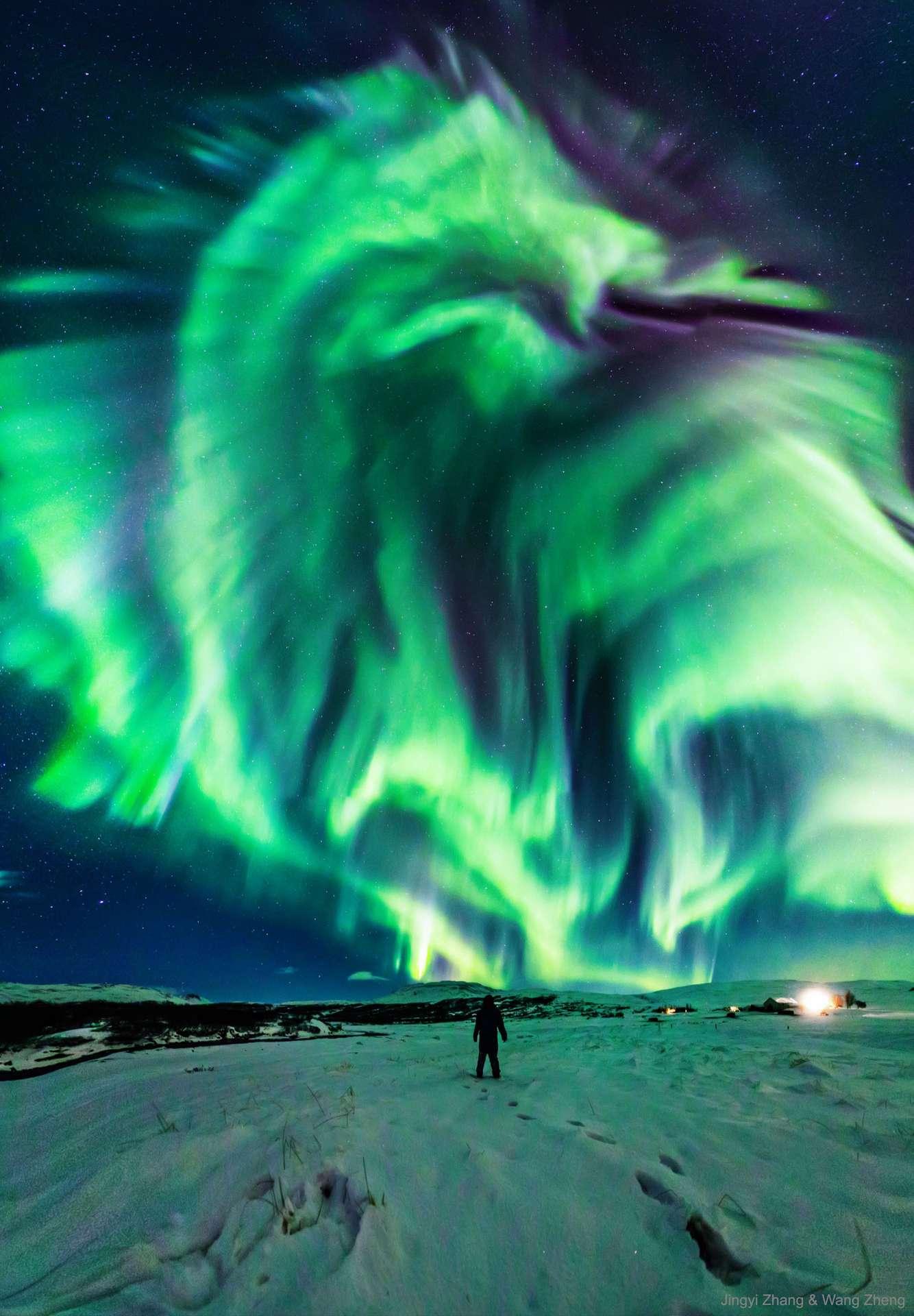 Une aurore boréale en forme de dragon surprise dans le ciel d'Islande. © Jingyi Zhang & Wang Zheng, APOD