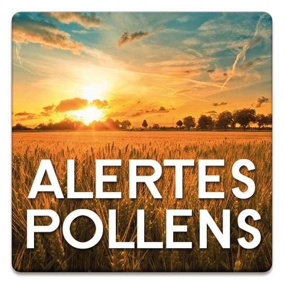 L'application Alertes Pollens informe directement sur un smartphone sur le risque d'irritation des voies respiratoires en fonction de la présence plus ou moins importante de pollens. © Stallergenes