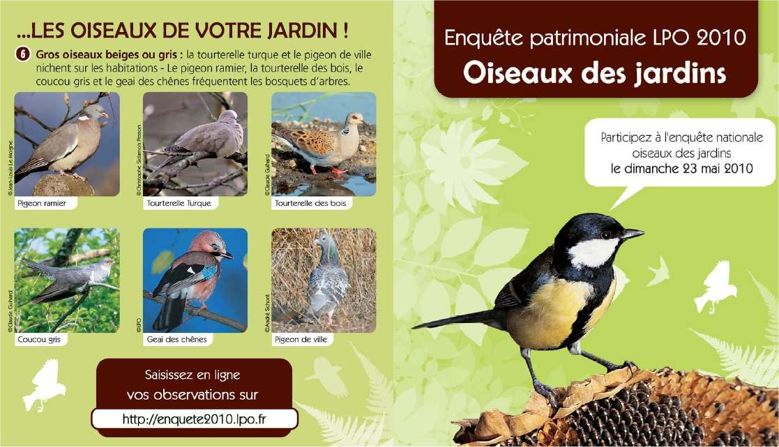 Un mini-guide d'identification simple et commode pour les oiseaux des jardins. © LPO