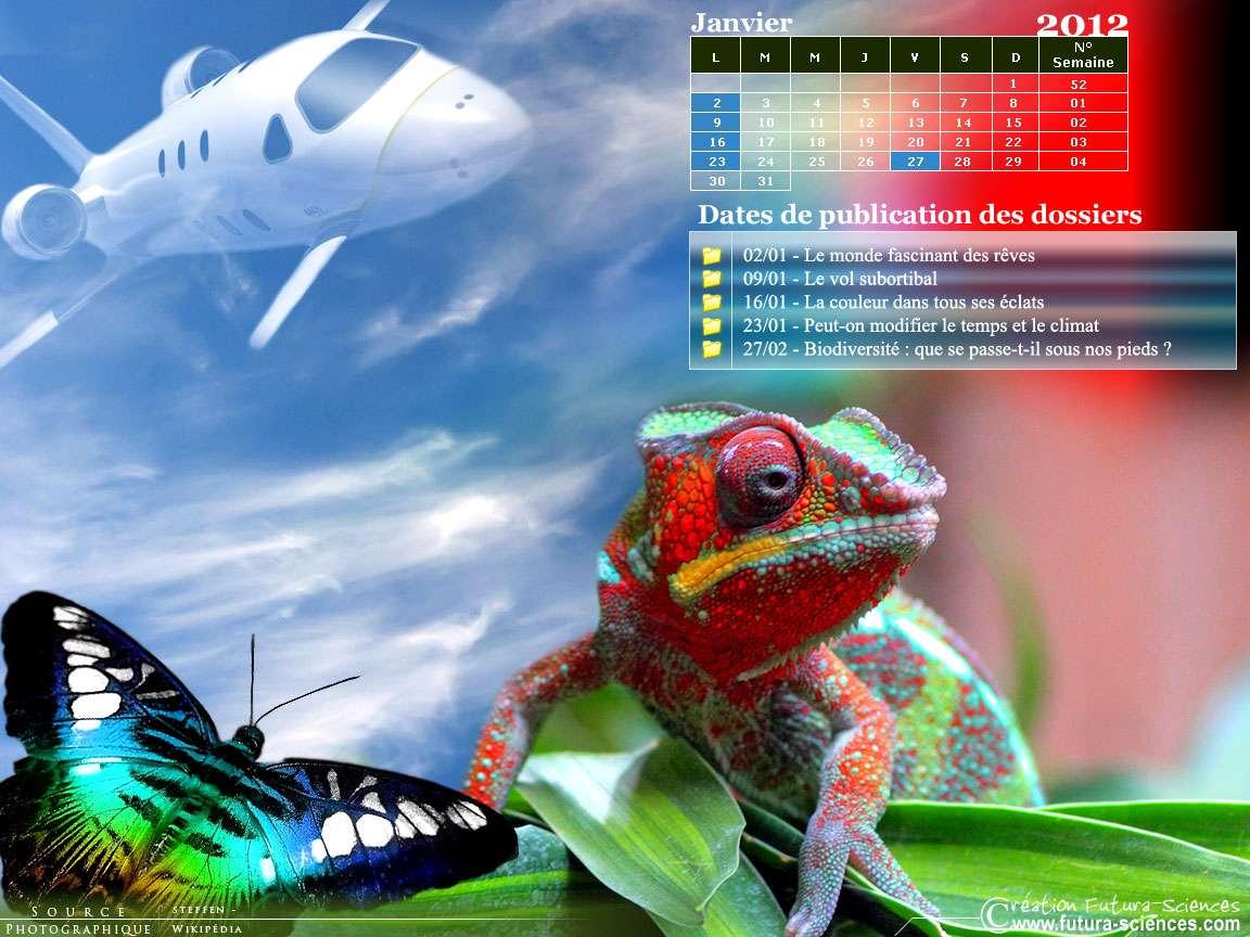 Les dossiers du mois de janvier sur Futura-Sciences. © Futura-Sciences