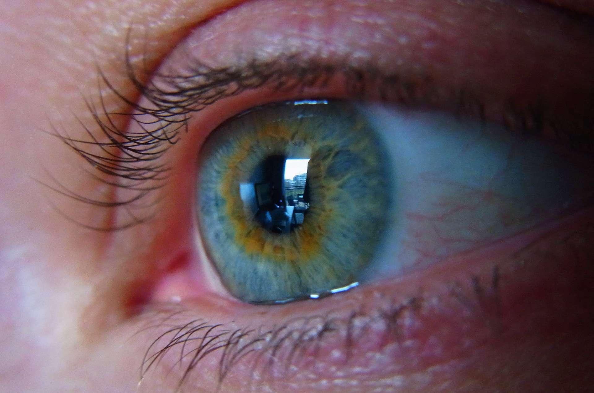 Un fan piste son idole en lisant dans ses yeux. © Gordon Wrigley, Flickr