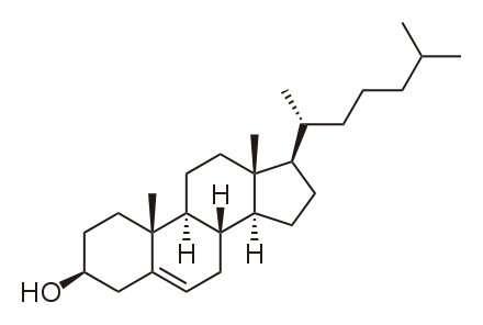 Le cholestérol est un lipide de la famille des stérols. © DR