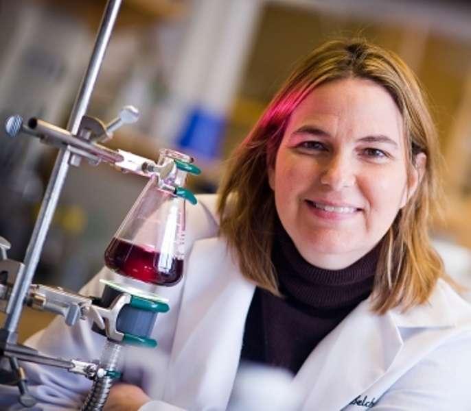 Angela Belcher devant le liquide contenant l'association de virus M13, de porphyrines et d'oxyde d'iridum capable de libérer de l'oxygène à partir de la lumière du soleil. Crédit : MIT-Dominick Reuter