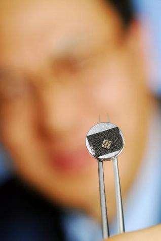 Zhong Lin Wang montrant le réseau de nanofilaments sur une puce créant un nanogénérateur (Crédits : Georgia Tech Photo : Gary Meek).