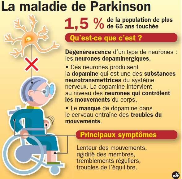 La maladie de Parkinson est la deuxième maladie neurodégénérative après la maladie d'Alzheimer. © ide