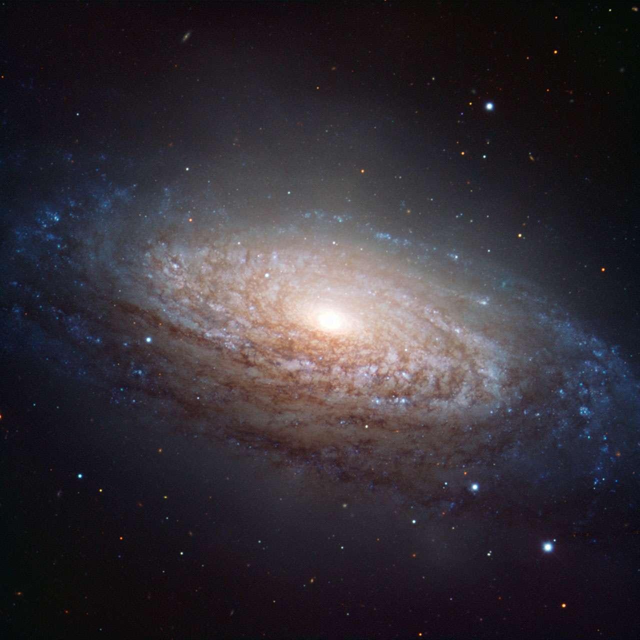 NGC 3521, la galaxie floconneuse de la constellation du Lion. © ESO/O. Maliy