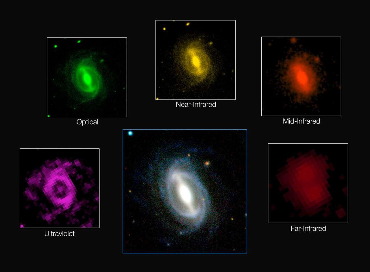 Cette image composite révèle l'apparence d'une galaxie typique du sondage Gama à différentes longueurs d'onde,. Ce vaste projet a mesuré l'énergie produite par plus de 200.000 galaxies. Le résultat obtenu offre l'estimation la plus précise à ce jour de l'énergie produite au sein de l'univers proche. Il confirme que la quantité d'énergie produite à l'heure actuelle dans une portion de l'univers représente la moitié environ de ce qu'elle était voici deux milliards d'années, et révèle que cette chute de production affecte l'ensemble des longueurs d'onde comprises entre l'ultraviolet et l'infrarouge lointain. © ICRAR/Gama and ESO