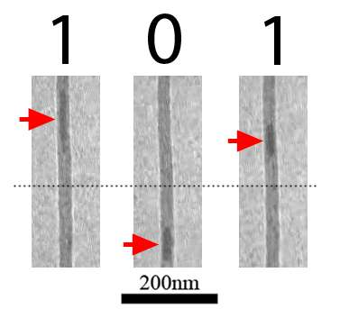 Les nanotubes de carbone observés au microscope électronique. Les flèches rouges indiquent la position de la nanoparticule de fer. © Zettl Research Group, Lawrence Berkeley National Laboratory and University of California at Berkeley