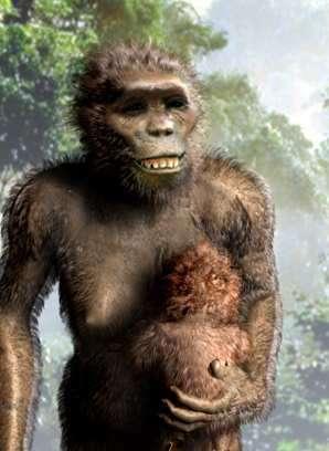 www.archaeologyinfo.comLucy, l'australopithèque de -3,2 millions d'années qui ne fait pas son âge !