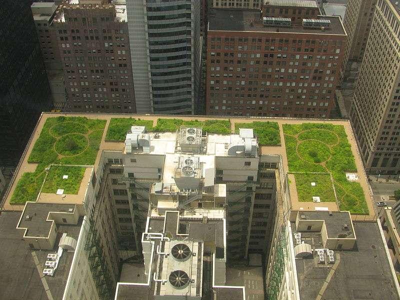 À Chicago, le toit du City Hall est vert depuis plusieurs années. Une tendance qui se confirme. Est-ce là une vision sur l'avenir de nos villes ? © TonyTheTiger, Wikimedia, cc by sa 3.0