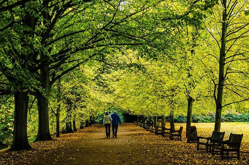 Marcher 74 minutes par semaine réduirait de 19 % les risques de mortalité. © Garry Knight (London, England), Flickr, CC by-sa 2.0