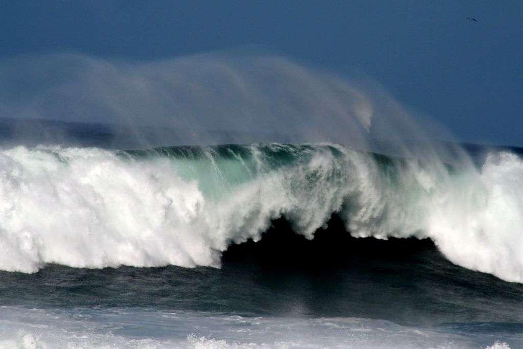 Pour vivre dans l'océan, les rivières, les torrents, les lacs ou les mares, les micro-organismes doivent s'adapter ici à la chaleur, là au froid, ailleurs au manque d'oxygène ou à un milieu chimiquement agressif. Leurs armes de défense viennent de la biochimie, et peuvent, chez un être humain, avoir un effet sur l'immunité, sur la réaction d'inflammation voire sur la croissance d'une tumeur. © Isolino, Flickr, cc by nc nd 2.0