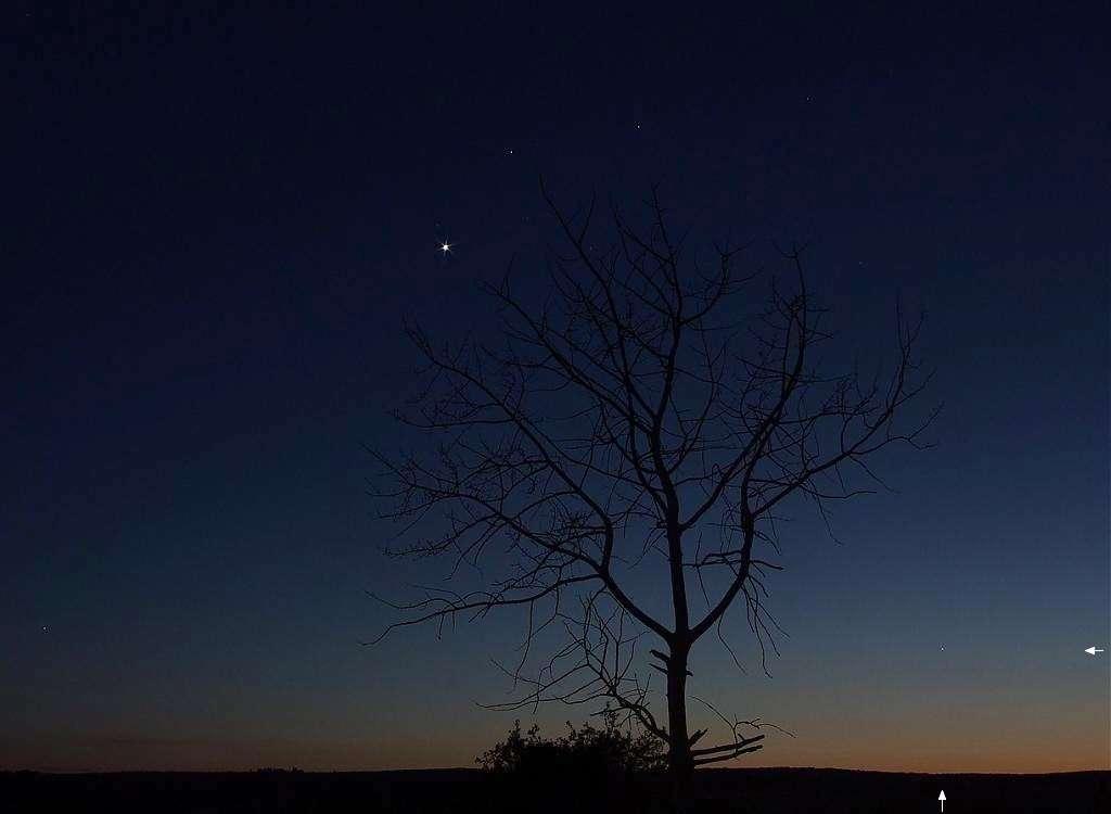 Sur cette image prise en mai 2007, le petit point de Mercure en bas à droite (flèches) ne peut rivaliser avec l'éclat de Vénus, légèrement à gauche au-dessus de l'arbre. Crédit J-B Feldmann