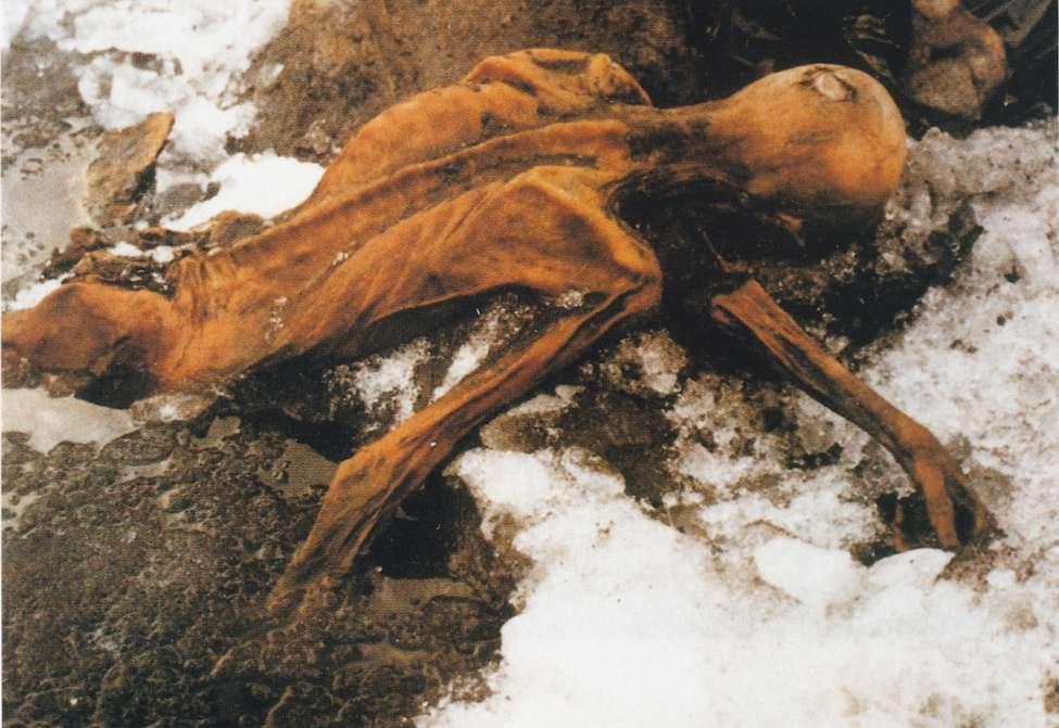 Ötzi est une célèbre momie retrouvée en 1991. Il s'agissait d'un homme ayant vécu il y a environ 4.500 ans dans les Alpes et qui a été conservé toutes ces années dans la glace. Depuis, son ADN, dans un très bon état, a parlé. © Didkovskaya, Flickr, cc by nc 2.0
