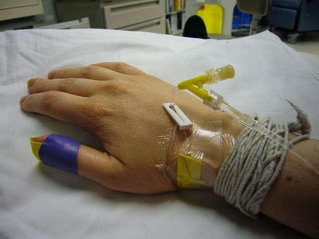 La majorité des chimiothérapies ciblent les cellules qui se divisent rapidement, comme les cellules cancéreuses. Malheureusement, d'autres cellules de l'organisme, saines, sont sans cesse renouvelées. Elles aussi sont détruites par les traitements médicamenteux, ce qui cause des effets secondaires. Des cellules souches génétiquement modifiées pour survivre semblent bien adaptées. © Kendrak, Flickr, cc by nc sa 2.0