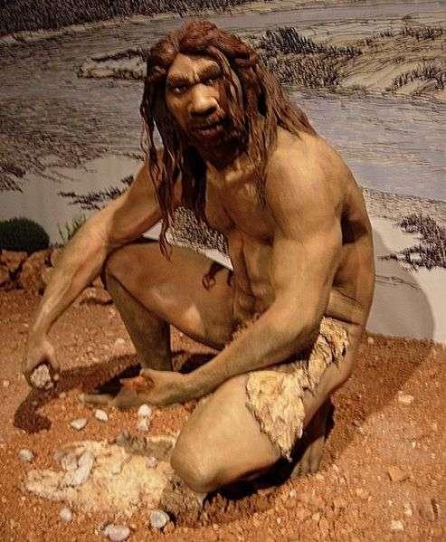 Si l'inactivation des gènes Siglec13 et Siglec17 a commencé à se répandre il y a plus de 400.000 ans, alors elle est apparue chez des ancêtres humains apparentés à l'Homo erectus ou à l'Homo heidelbergensis. © Jose Luis Martinez Alvarez, Wikipédia, DP