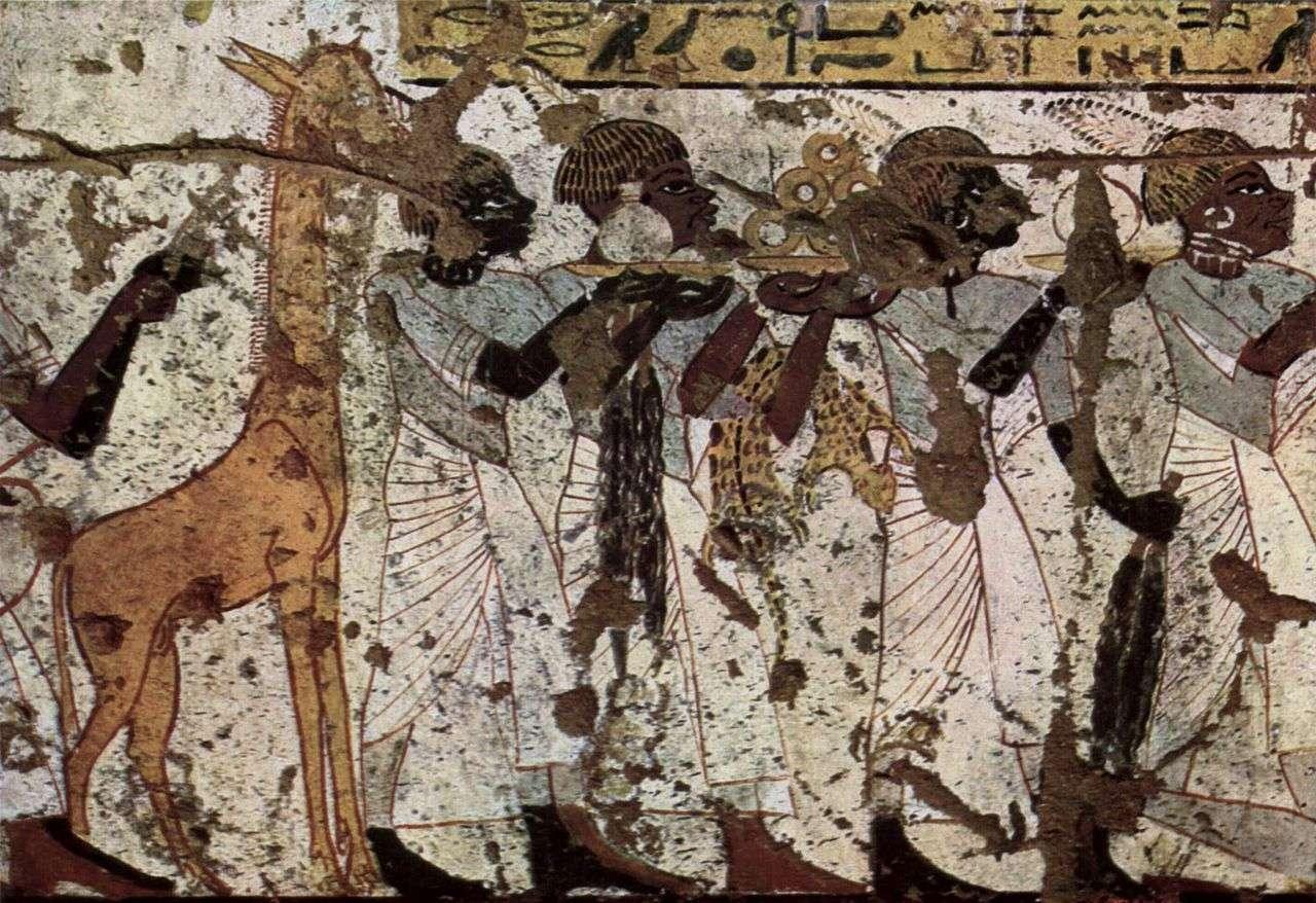 Sur cette fresque murale dans une tombe égyptienne du XIVe siècle avant J.-C., on remarque la présence d'une girafe. On pouvait encore en trouver dans la vallée du Nil à cette époque. Bien qu'il faille interpréter avec précaution les images d'animaux dans l'ancienne Égypte, par exemple en les recoupant avec des données paléontologiques, elles constituent une riche source d'informations sur l'écosystème de la vallée du Nil au cours des millénaires. © Wikipédia, DP