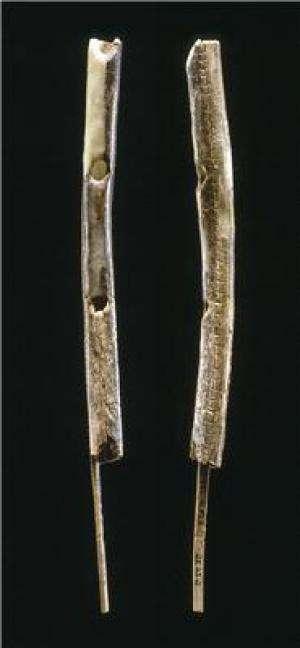 Cette flûte à deux trous en ivoire de mammouth aurait entre 42.000 et 43.000 ans. Elle a été découverte dans la grotte de Geißenklösterle dans le Jura Suabe, dans le sud-ouest de l'Allemagne. © University of Tübingen