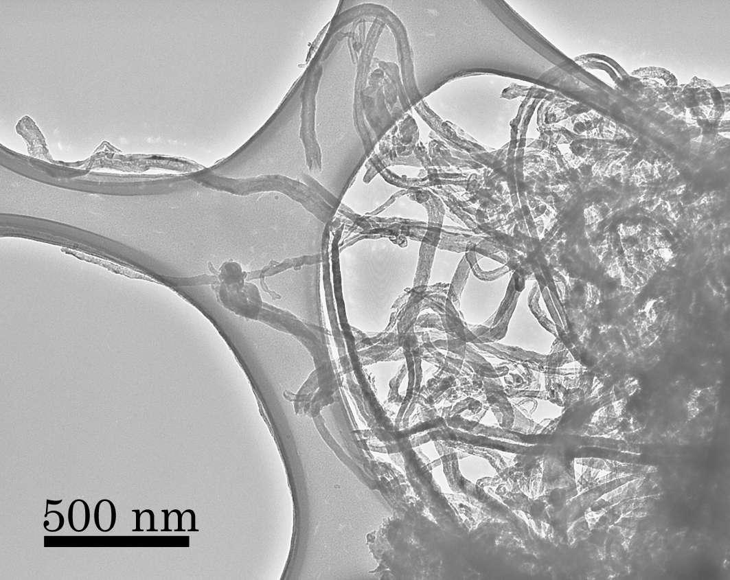 Les nanotubes de carbone synthétisés sans catalyseur métallique, comme le platine, vus au microscope électronique. La barre noire en bas à gauche indique les distances en nanomètres. Crédit : Yuki Kimura, Tohoku University
