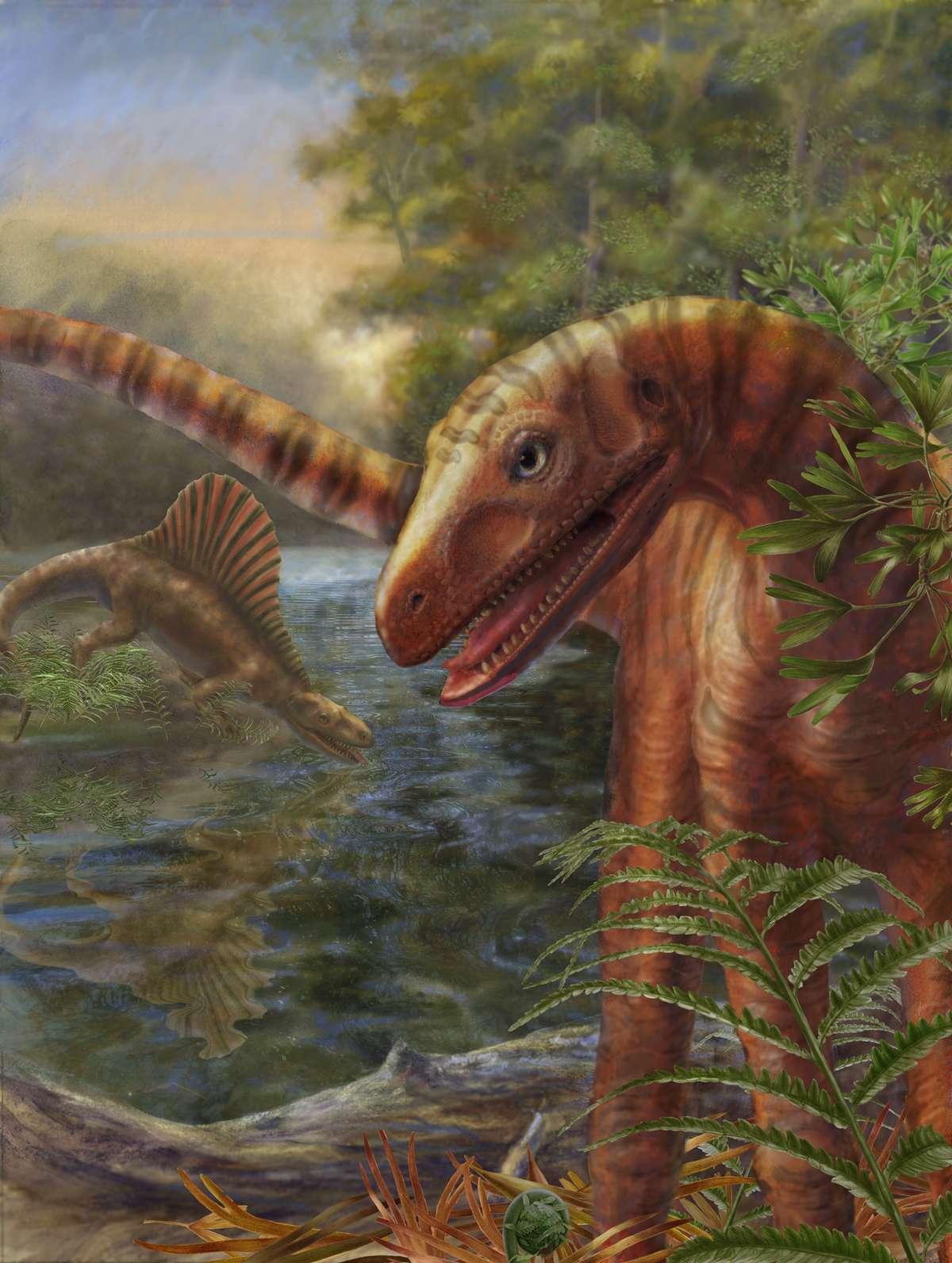 Au premier plan, une reconstitution d'artiste de Asilisaurus kongwe. Crédit : Marlene Donnelly, Field Museum