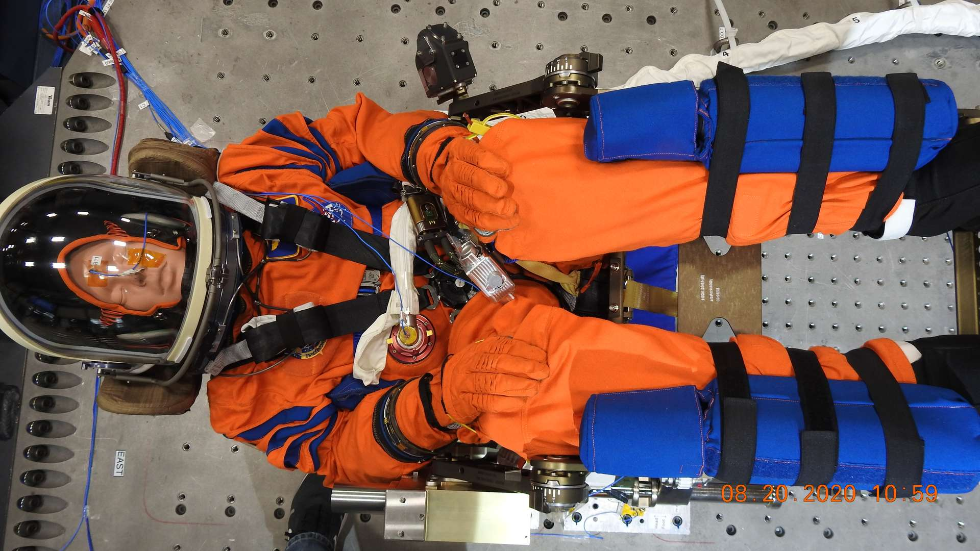 Le mannequin — qui aurait aussi pu s'appeler Delos, du nom de l'île sur laquelle Apollo et Artemis sont nés, Ace pour « Artemis Crew Explorer » ou encore Rigel comme l'étoile supergéante de la constellation d'Orion — a déjà servi à tester le système d'amortissement d'énergie du vaisseau spatial Orion du côté du Centre spatial Kennedy (États-Unis). © Nasa