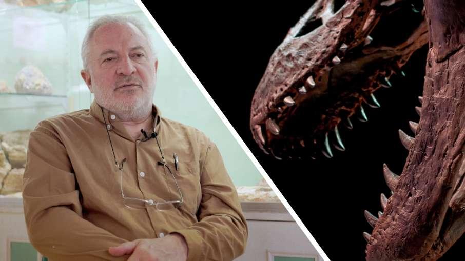 Interview : des dinosaures dans le sud de la France ?