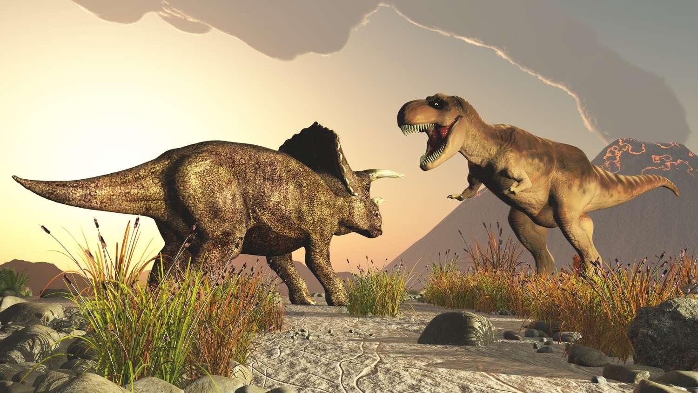 Le tricératops et le tyrannosaure font partie des dinosaures les plus connus. Eux datent de la fin du Crétacé mais d'autres sont apparus avant, au Trias, qui marque la montée en puissance des dinosaures. Leur apparition aurait été très rapide. © Computer Earth, Shutterstock