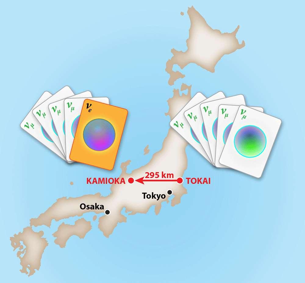 L'expérience T2K au Japon mesure l'apparition de neutrinos électroniques νe dans un faisceau de neutrinos muoniques νμ en raison des oscillations des neutrinos. Un faisceau pur de ces neutrinos part d'une source à Tokai en direction d'un détecteur situé à Kamioka et distant de 295 kilomètres. © APS, Alan Stonebrake