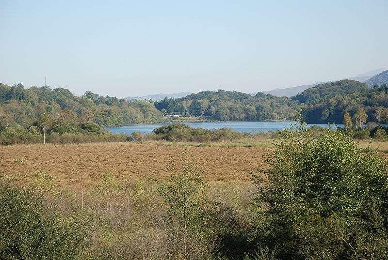 Les habitats humides du lac de Lourdes (landes humides, tourbières et marais calcaires) ont motivé le classement du site en zone de conservation spéciale au titre de la directive Habitat Faune Flore. © Darreenvt, Wikimédia CC by-sa 3.0