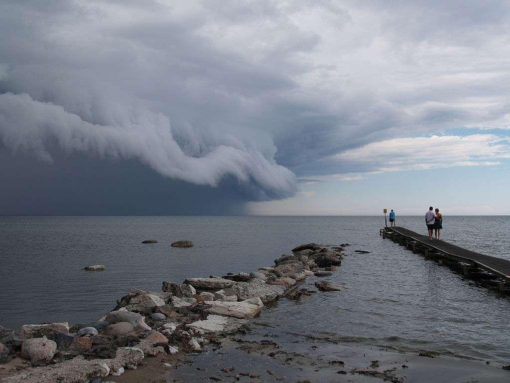La formation des nuages, comme ces cumulonimbus, constitue l'un des objets d'étude de la météorologie. © Arnoldius, Wikipédia, CC by-sa 2.5