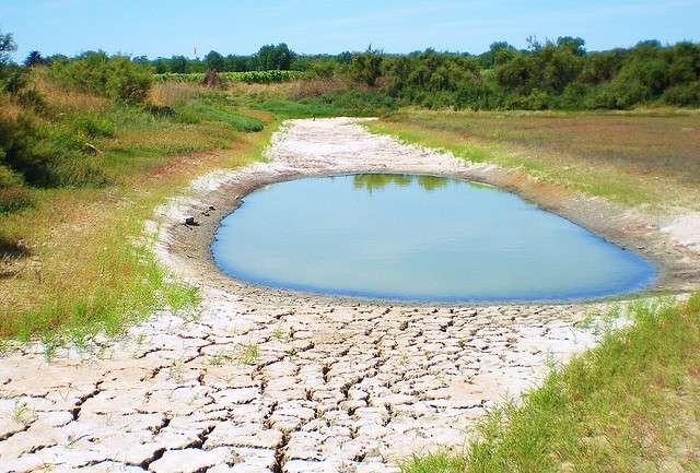 Des étés plus secs et plus chauds obligeront à une meilleure gestion de l'eau et une récupération plus importante de l'eau de pluie. © Thierry Llansades, Flickr, CC by-nc-nd 2.0