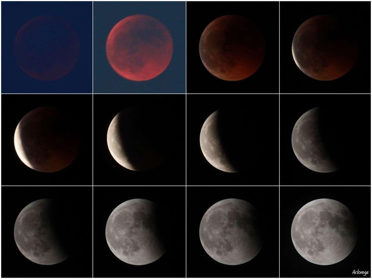 Un montage permettant de visualiser les différentes étapes de l'éclipse totale de Lune du 15 juin 2011. © aclorega