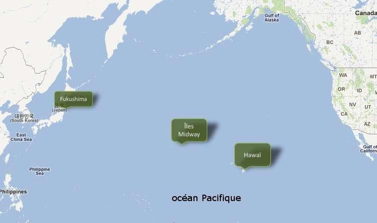 Des tonnes de débris apportés par le tsunami japonais du 11 mars se dirigent vers les États-Unis © Bruno Scala/Futura-Sciences (fond GoogleMaps)