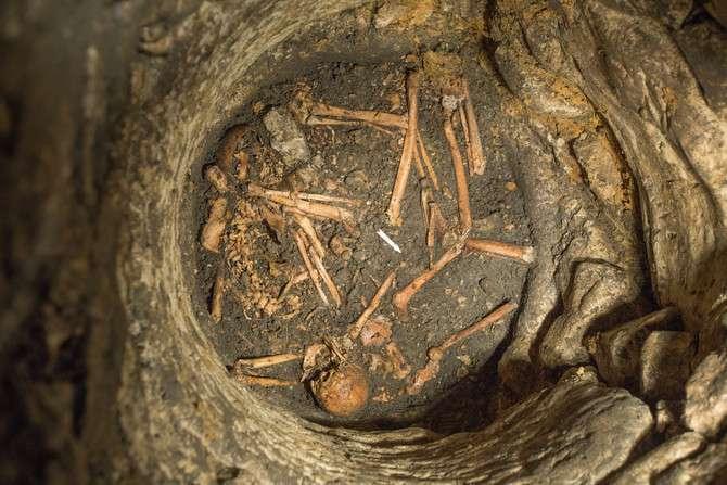 Cette photographie a été prise sur le site de fouilles archéologiques d'Entrains-sur-Nohain. Elle montre une vue générale d'une passe de décapage avec les vestiges humains qui ont été mis au jour. © Captair