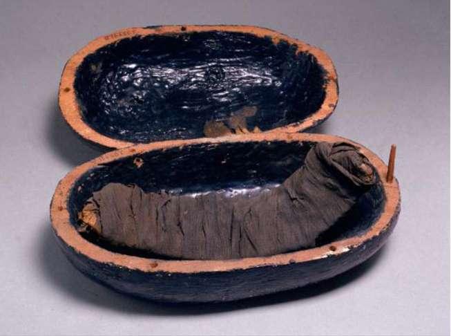 Ces côtes de bœuf ont été spécialement préparées pour des membres de la belle-famille d'Amenhotep III décédés entre 1386 et 1349 avant J.-C., pour qu'ils ne meurent pas de faim dans l'au-delà. © Pnas