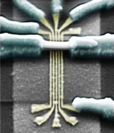 Des ordinateurs quantiques topologiques avec des fermions de Majorana ? À l'image, une micrographie électronique d'un nanofil d'antimoniure d'indium (barre horizontale, au centre) similaire à celui utilisé pour rechercher des fermions de Majorana. © Delft University of Technology