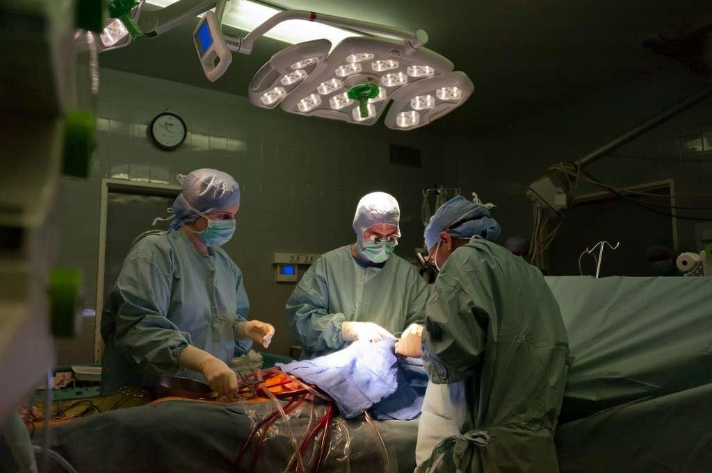 L'opération réalisée le mercredi 18 décembre sur un patient de 75 ans s'est bien déroulée. Cet homme est devenu le premier à porter le cœur artificiel de Carmat. Une avancée technologique et médicale. © CG94 Photos, Flickr, cc by nc nd 2.0