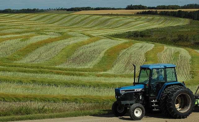Dans l'histoire de l'agriculture, l'arrivée des tracteurs a permis l'agrandissement des parcelles agricoles et favorisé les paysages en openfield. © jenny222, Fliskr, cc by nd nd 2.0