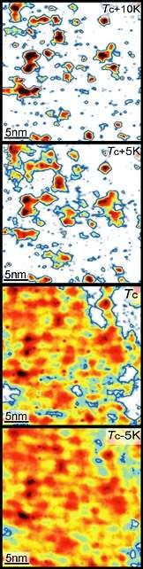 En fonction de la température, des zones restées dans un état supraconducteur au-dessus de la température critique Tc disparaissent (Crédit : Ali Yazdani).